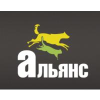 petdv.ru