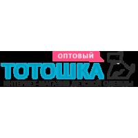 to-toshka.ru