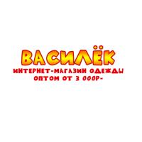 vasilek-omsk.ru