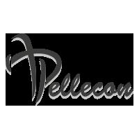 www.pellecon.ru